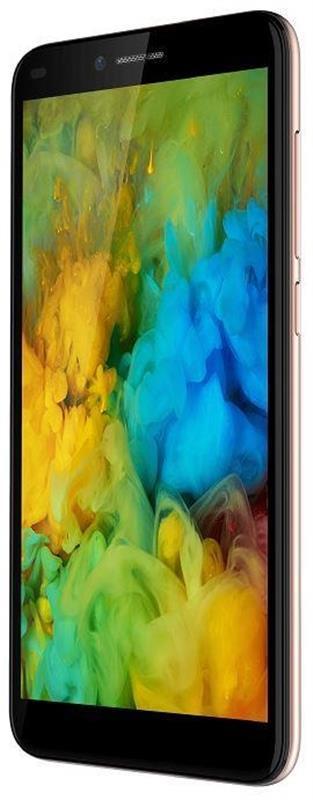 2E F534L 2018 Dual Sim Gold (708744071149) - купить в интернет-магазине Анклав