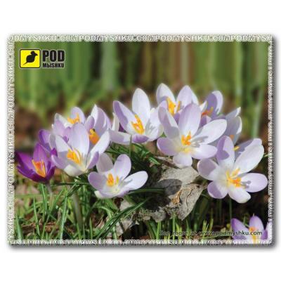 Килимок для миші Pod Mishkou Весна-Крокусы - купить в интернет-магазине Анклав